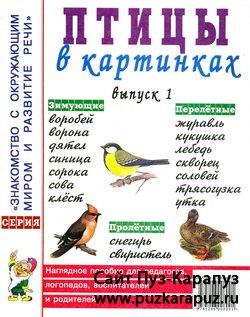 Птицы в картинках 1